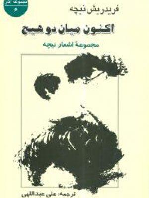 کتاب اکنون میان دو هیچ (مجموعه اشعار نیچه) اثر فریدریش نیچه انتشارات جامی